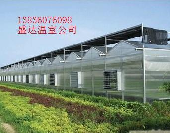 哈尔滨喷灌设备卷盘式喷灌智能化温室催芽催芽阳光板温室