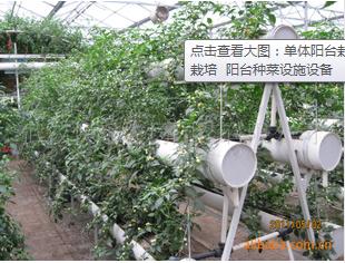 单体阳台栽培 阳台立体菜园 蔬菜无土栽培 阳台种菜设施设备