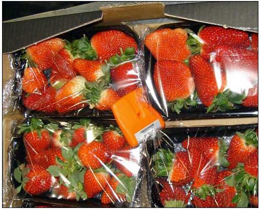 草莓培育商采用RFID解决温度问题