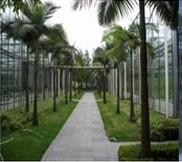 温室智能栽培与环境调控系统